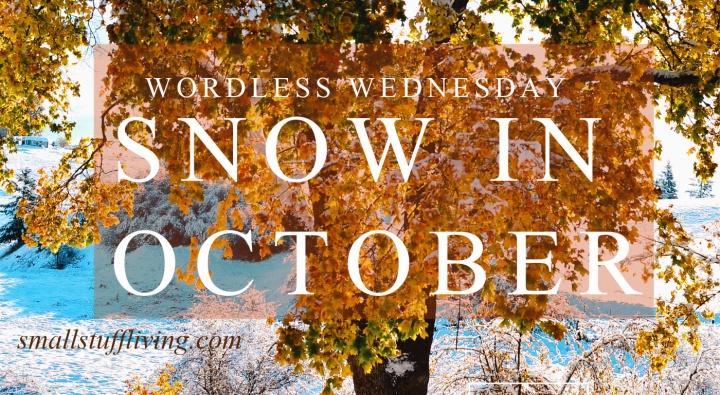 Wordless Wednesday – OctoberSnow